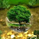Teknologien-som-forbedrer-økologien