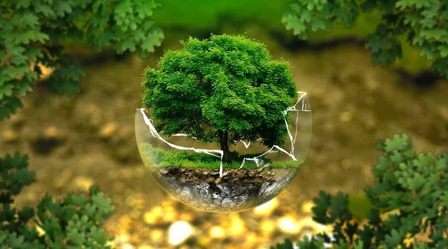 Teknologien som forbedrer økologien